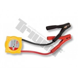 Ochrona przepięciowa do 24 V akumulatorów TRIUMF PROFESSIONAL